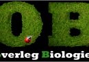 Dutch LOBS reaches out to other EU biology students organisations
