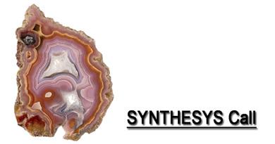 SYNTHESYS Call small